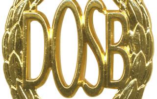 DOSB_Sportabzeichen_Gold
