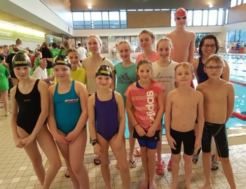 23. Kreismeistertitel für Emlichheimer Schwimmer