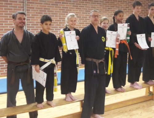 2. Erfolgreiche Karateprüfung in 2019 beim SCU-Emlichheim Abteilung Karate